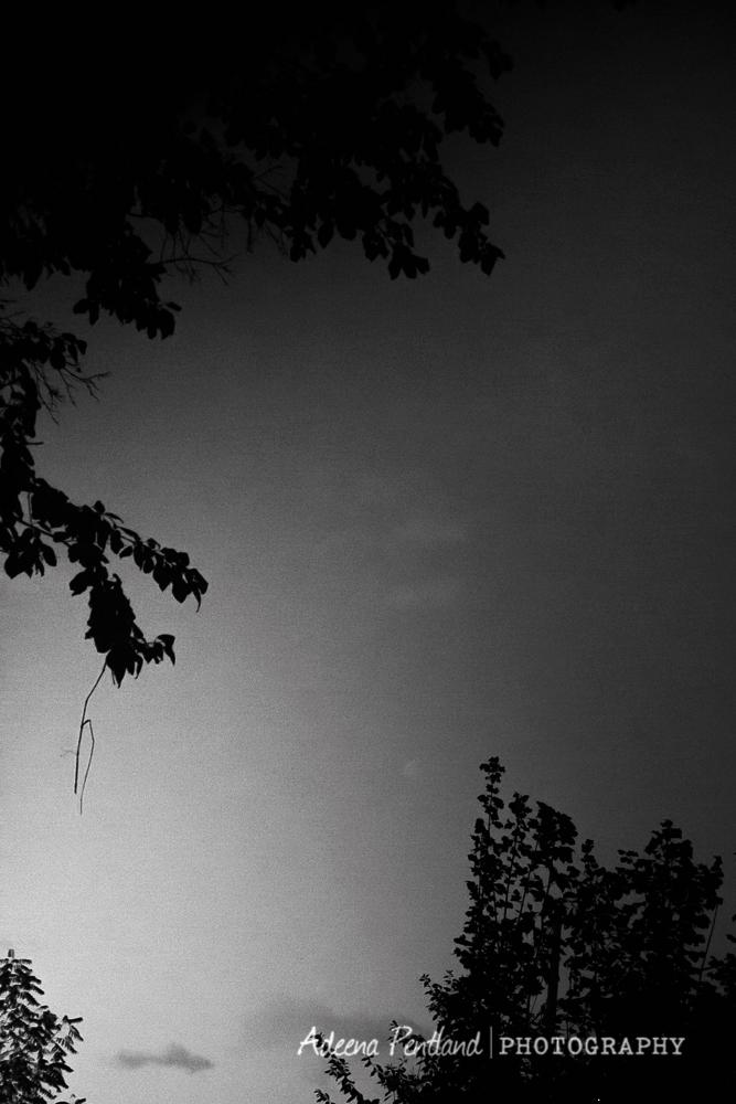 20131023-IMG_0080